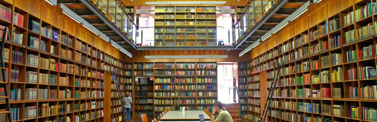 Goethe Uni Online Bib